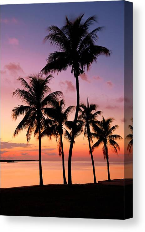 Sunset Canvas Print featuring the photograph Florida Breeze by Chad Dutson