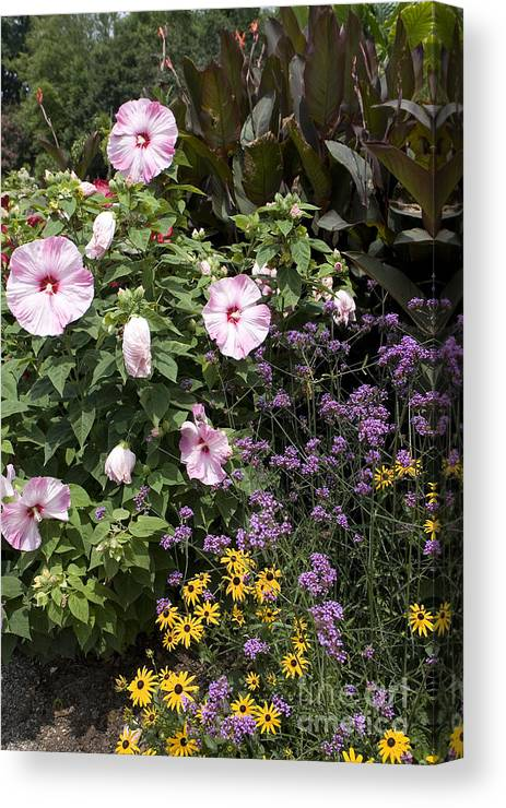 Garden Canvas Print featuring the photograph Flowers In A Garden by Jason O Watson