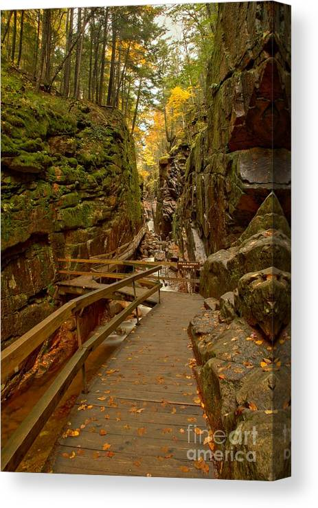 Flume Gorge Canvas Print featuring the photograph Franconia Notch Flume Gorge Boardwalk by Adam Jewell