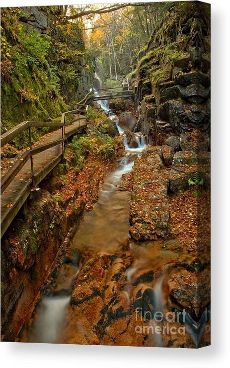 Flume Gorge Canvas Print featuring the photograph Franconia Notch Lush Greens And Rushing Waters by Adam Jewell