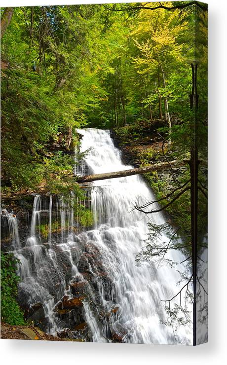 Ganoga Canvas Print featuring the photograph Ganoga Falls by Frozen in Time Fine Art Photography