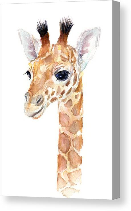 Watercolor Canvas Print featuring the painting Giraffe Watercolor by Olga Shvartsur