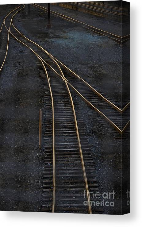 Black Canvas Print featuring the photograph Golden Tracks by Margie Hurwich
