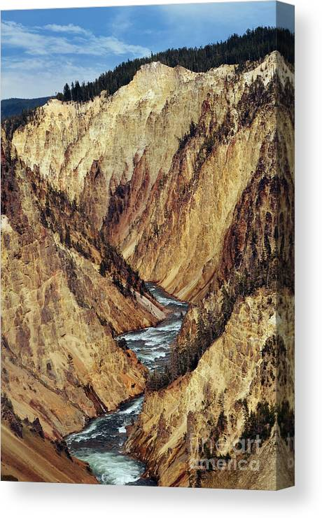 Grand Canyon Canvas Print featuring the photograph Grand Canyon Of Yellowstone by Rachel Barrett