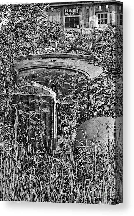 Cars Canvas Print featuring the photograph Growing Weeds by Randy Harris
