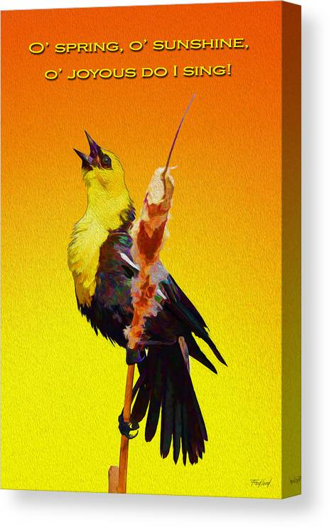 Bird Canvas Print featuring the photograph In Rapturous Joy He Sings by Fred J Lord