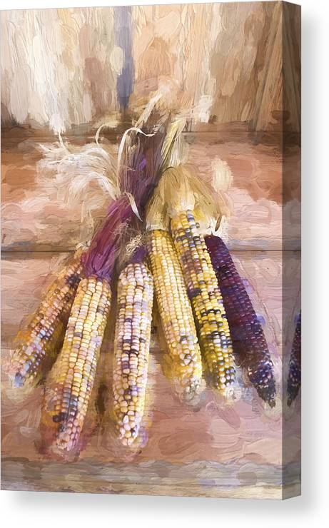 Indian Canvas Print featuring the photograph Indian Corn Painterly Effect by Carol Leigh