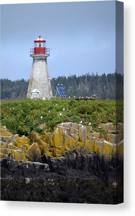 Lighthouse Canvas Print featuring the photograph Island Lighthouse In Nova Scotia by Mary Christian Stewart