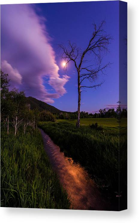 Wyoming Canvas Print featuring the photograph Moonlight Meadow by Chad Dutson