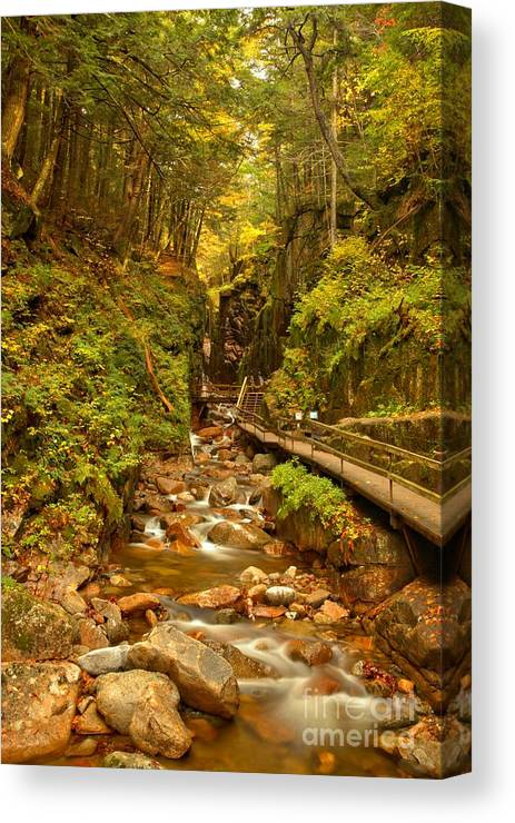 Flume Gorge Canvas Print featuring the photograph New England Waterfall Gorge by Adam Jewell