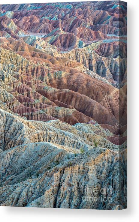 Abdsp Canvas Print featuring the photograph Ocotillos And Ridges by Alexander Kunz