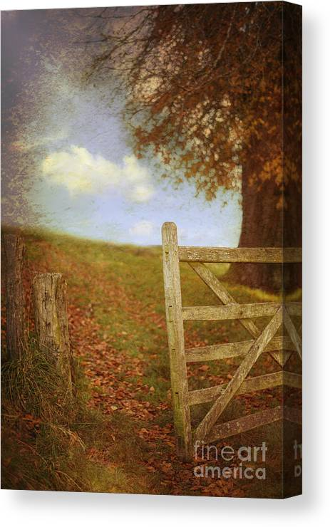 Open Canvas Print featuring the photograph Open Country Gate by Amanda Elwell