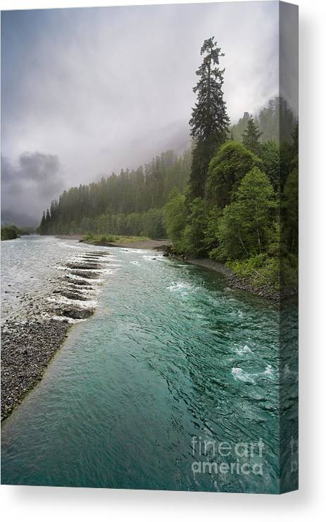 Landscape Canvas Print featuring the photograph Quinault Serenity by Don Hall