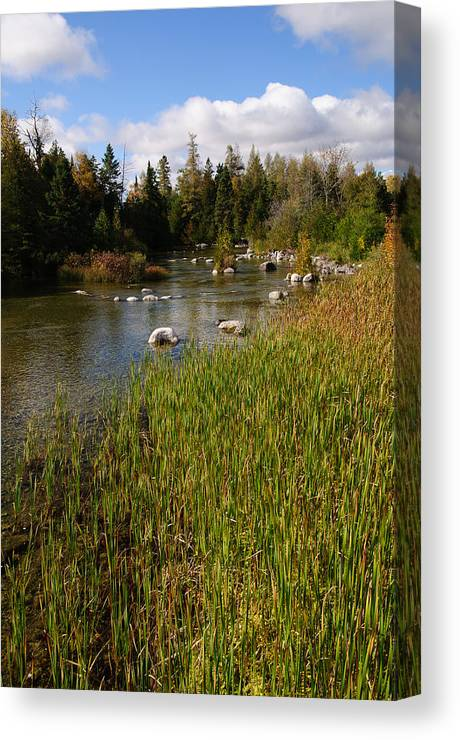 River Canvas Print featuring the photograph River Scene by David Jenniskens
