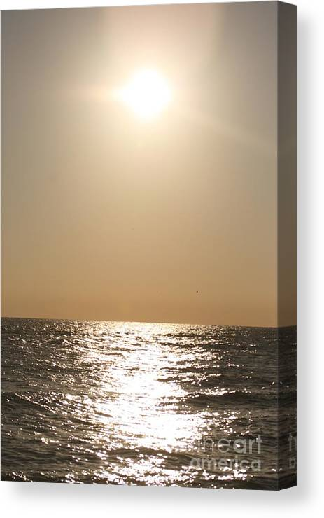 Silver Canvas Print featuring the photograph Silver And Gold by Nadine Rippelmeyer