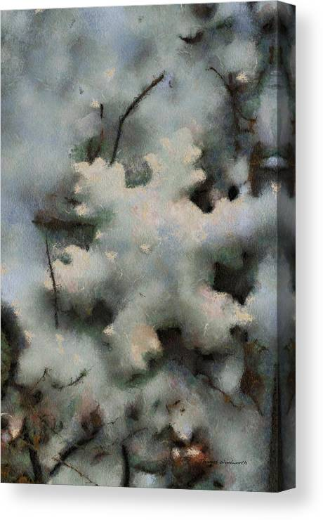 Season Canvas Print featuring the photograph Snow Flake 03 Photo Art by Thomas Woolworth