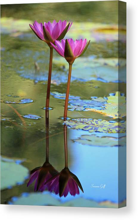 Lotus Canvas Print featuring the photograph Soul Mates by Suzanne Gaff