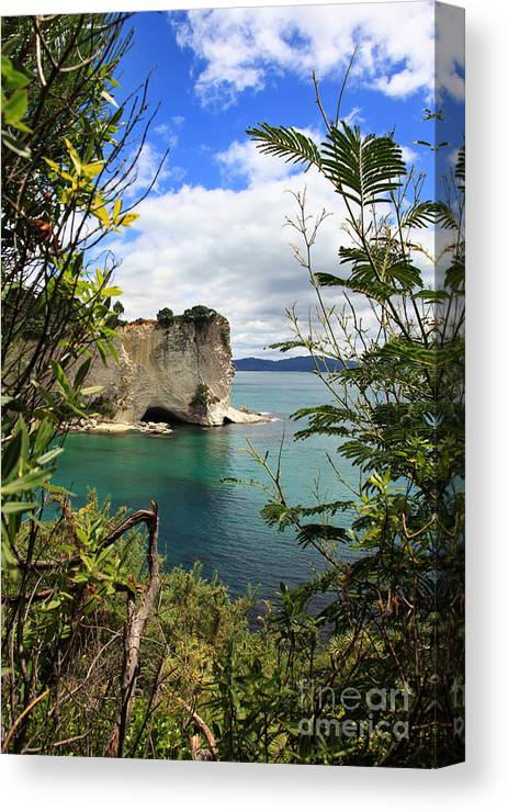 Stingray Bay Canvas Print featuring the photograph Stingray Bay by Fabian Roessler