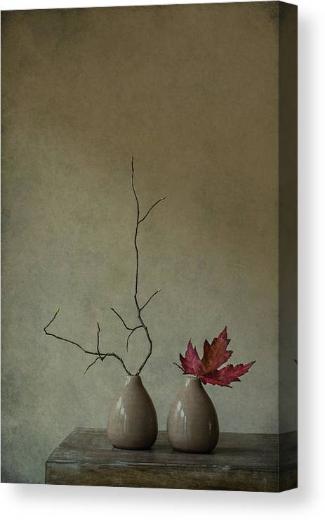 Vases Canvas Print featuring the photograph Strange Companions by Galina Bunkova