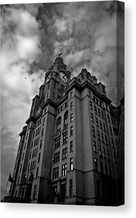 Liverpool Canvas Print featuring the photograph Two Birds One City by Drew Millington