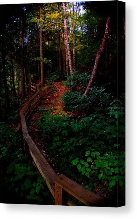 Blue Ridge Mountains Canvas Print featuring the photograph Virginia Morning by Jon Emery