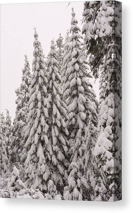Shaver Lake Canvas Print featuring the photograph Wnter Snow At Shaver Lake by Doug Holck