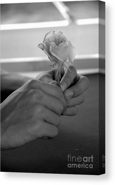 Love Canvas Print featuring the photograph Young Love by Jennie Stewart