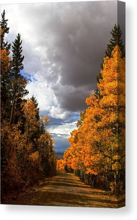 Autumn Canvas Print featuring the photograph Rocky Mountain Fall by Mark Smith