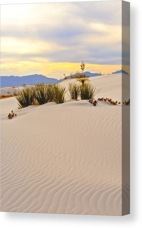 Landscape Canvas Print featuring the photograph White Sands by Larry Gohl