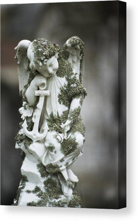 Angel 2 Canvas Print featuring the photograph Angel 2 by Learne Palmer