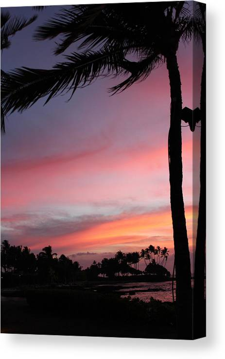 Hawaii Canvas Print featuring the photograph Can You Cry? by Raquel Amaral