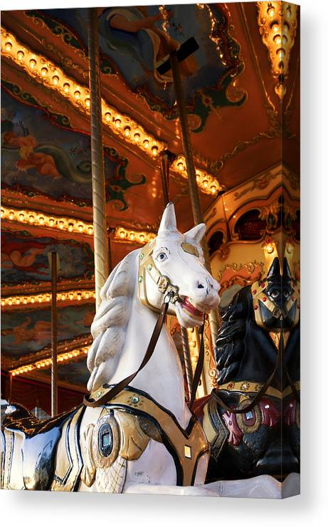 Detail Canvas Print featuring the photograph Carousel Horse by Fabrizio Troiani
