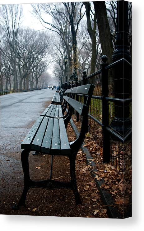 Park Bench Canvas Print featuring the photograph Central Park Bench by Heidi Reyher