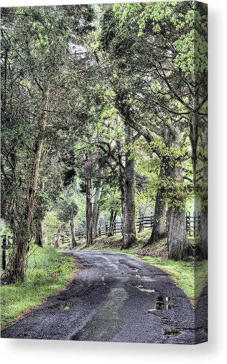 County Roads Canvas Print featuring the photograph County Roads by JC Findley