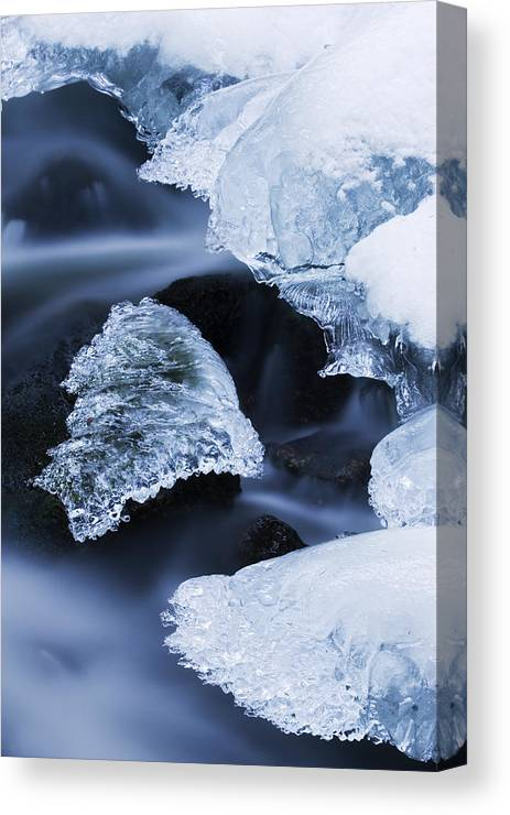 Fn Canvas Print featuring the photograph Ice Patches In Stream, Bavarian Forest by Heike Odermatt