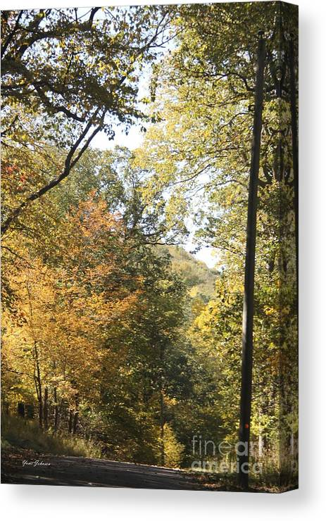 Fall Canvas Print featuring the photograph Lost In The Fall by Yumi Johnson