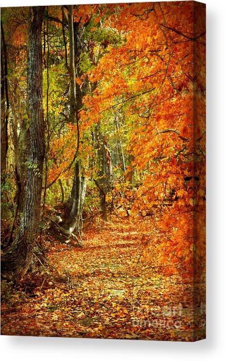 Autumn Canvas Print featuring the photograph Pathway Through Autumn Woods by Cheryl Davis