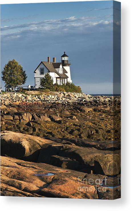 Corea Canvas Print featuring the photograph Prospect Harbor Lighthouse by John Greim