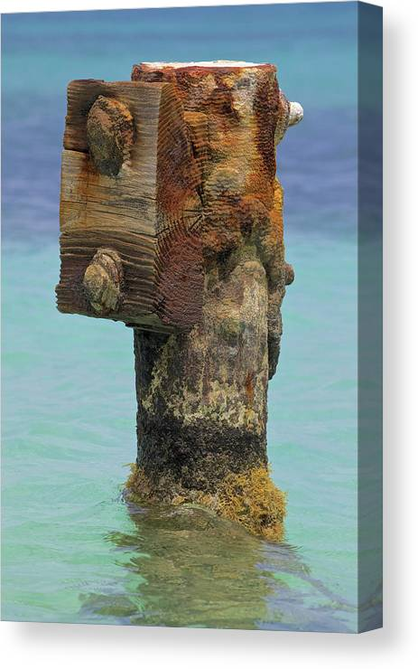 Aruba Canvas Print featuring the photograph Rusted Dock Pier Of The Caribbean Iv by David Letts