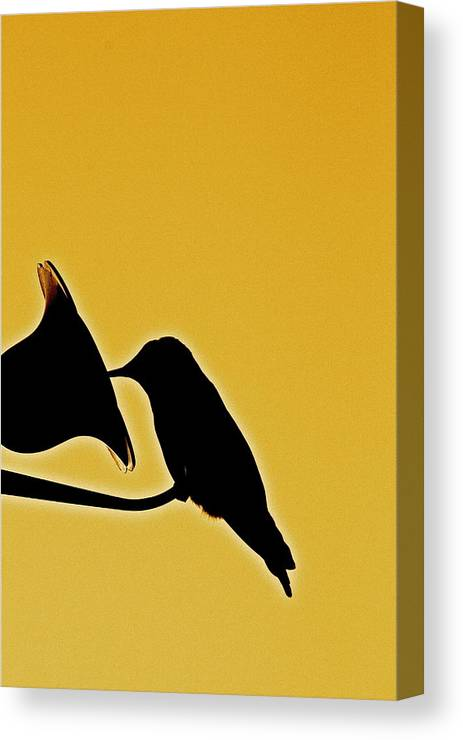 Birds Canvas Print featuring the photograph Sepia Silhouette by Diana Hatcher