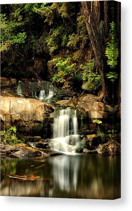 Bowen Canvas Print featuring the photograph The Fall by Long Nguyen