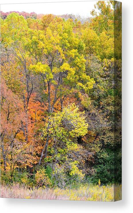 Fall Canvas Print featuring the photograph Time For The Change by Kim Hymes