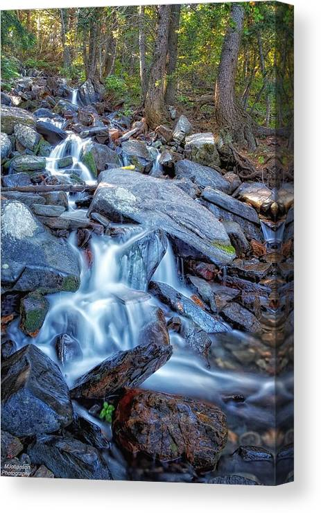 Waterfall Canvas Print featuring the photograph Tons Of Falls by Mitch Johanson
