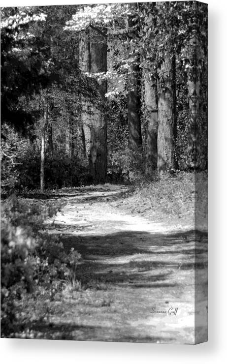 Black And White Canvas Print featuring the photograph Walking In The Springtime Woods In Black And White by Suzanne Gaff