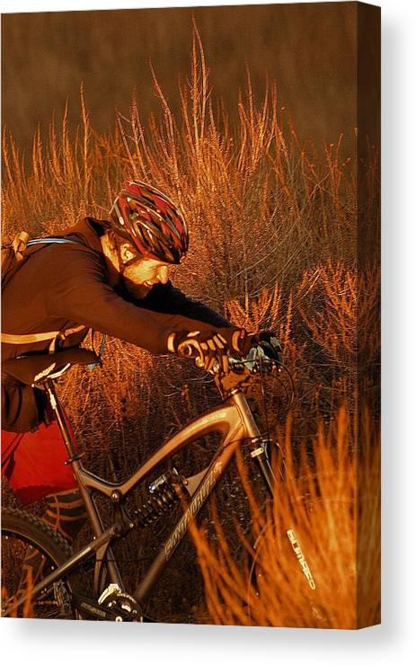 Mountain Canvas Print featuring the photograph Mountain Bike by Viktor Savchenko