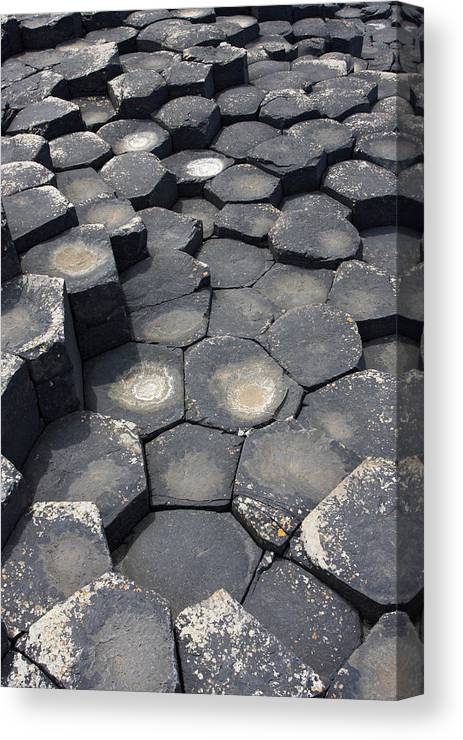 Giant Canvas Print featuring the photograph Giant Causeway Northern Ireland by Pierre Leclerc Photography