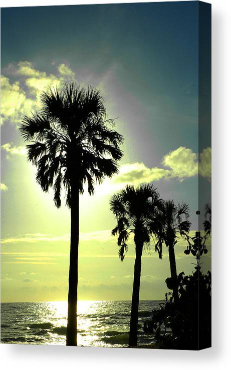 Photography Canvas Print featuring the photograph Honeymoon Island Sunset by Susanne Van Hulst