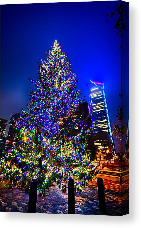 Christmas Canvas Print featuring the photograph Christmas Tree Near Panther Stadium In Charlotte North Carolina by Alex Grichenko