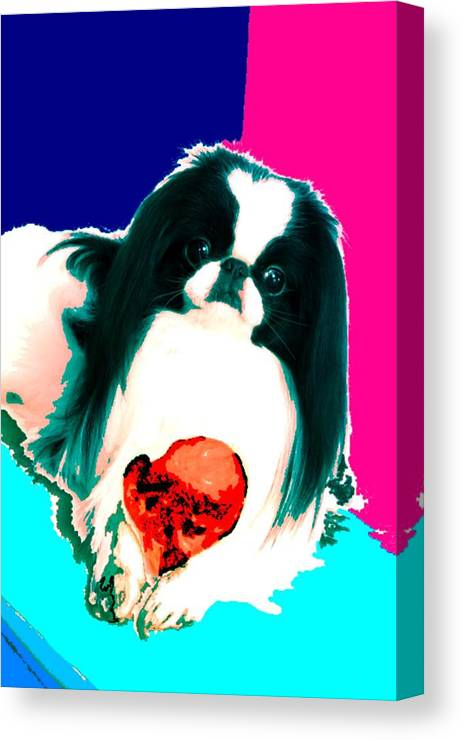 A Japanese Chin And His Toy Canvas Print featuring the digital art A Japanese Chin And His Toy by Kathleen Sepulveda