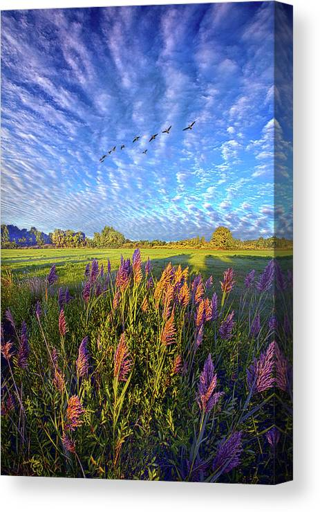 Clouds Canvas Print featuring the photograph All Things Created And Held Together by Phil Koch